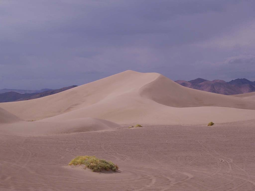 Hiking on the dunes